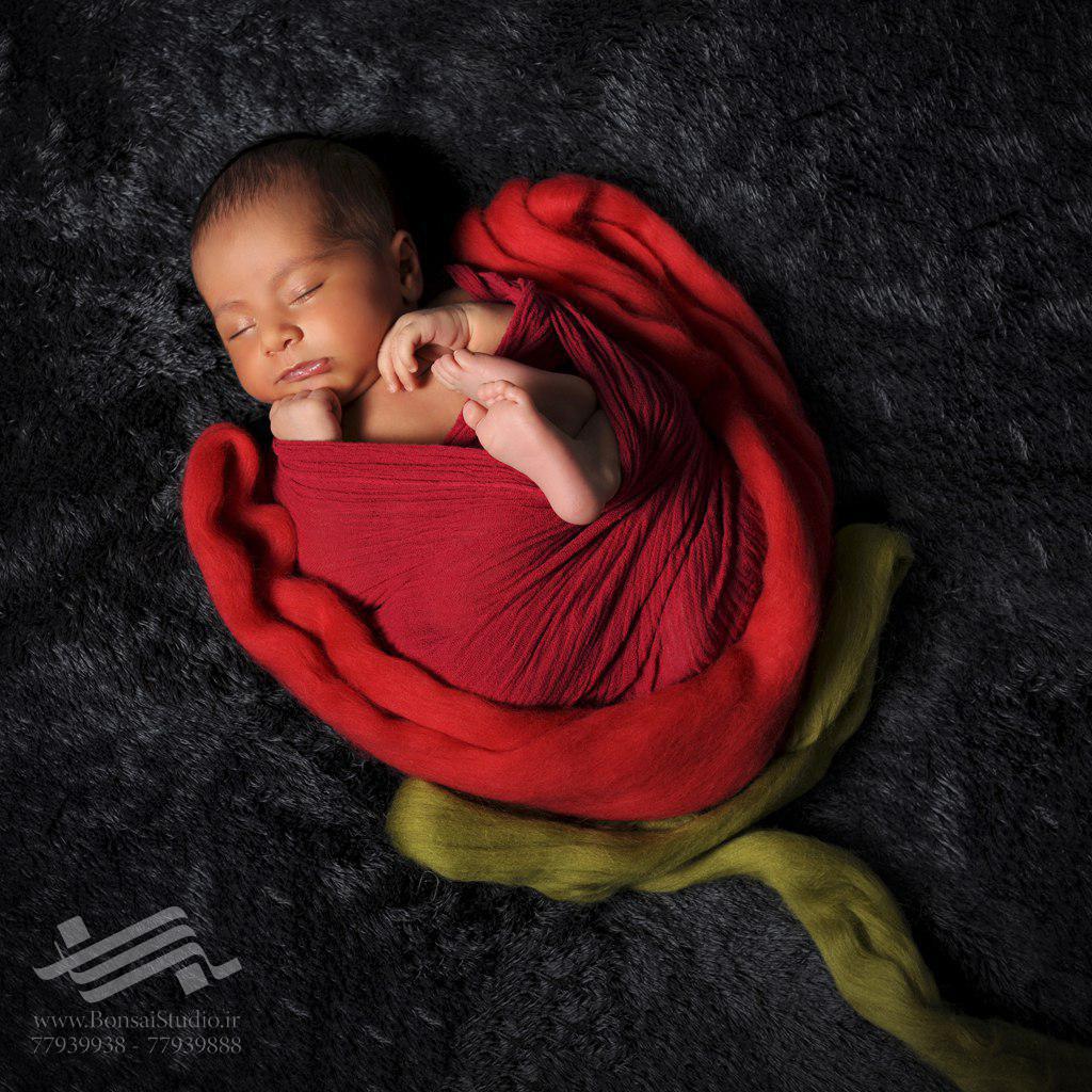 نکات آموزشی برای عکاسی نوزاد