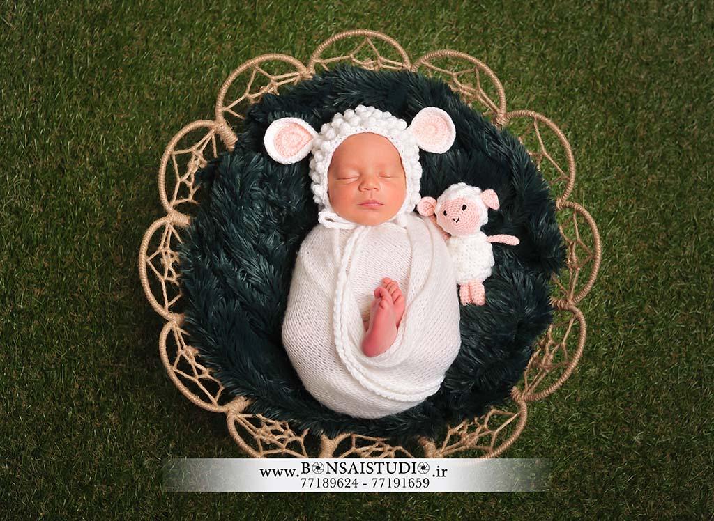 عکاسی از کودک با تم گوسفند