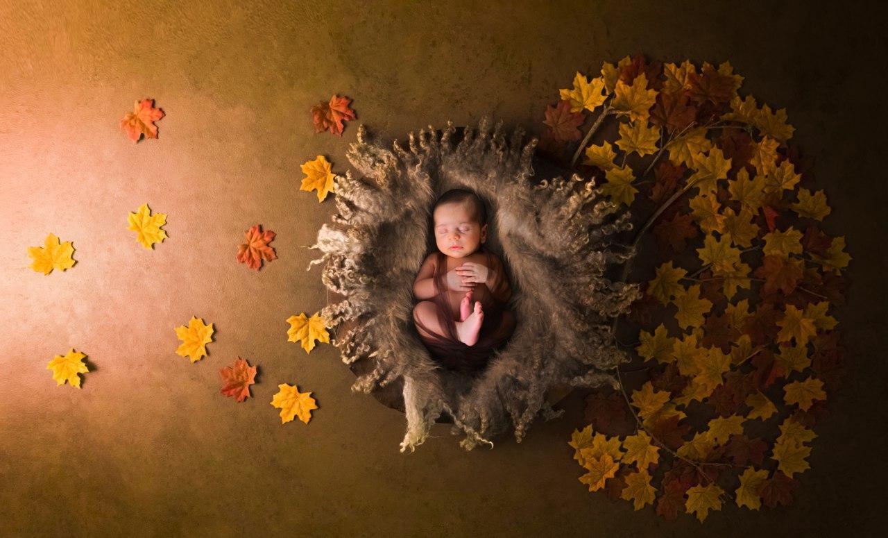 تم پاییز در آتلیه کودک