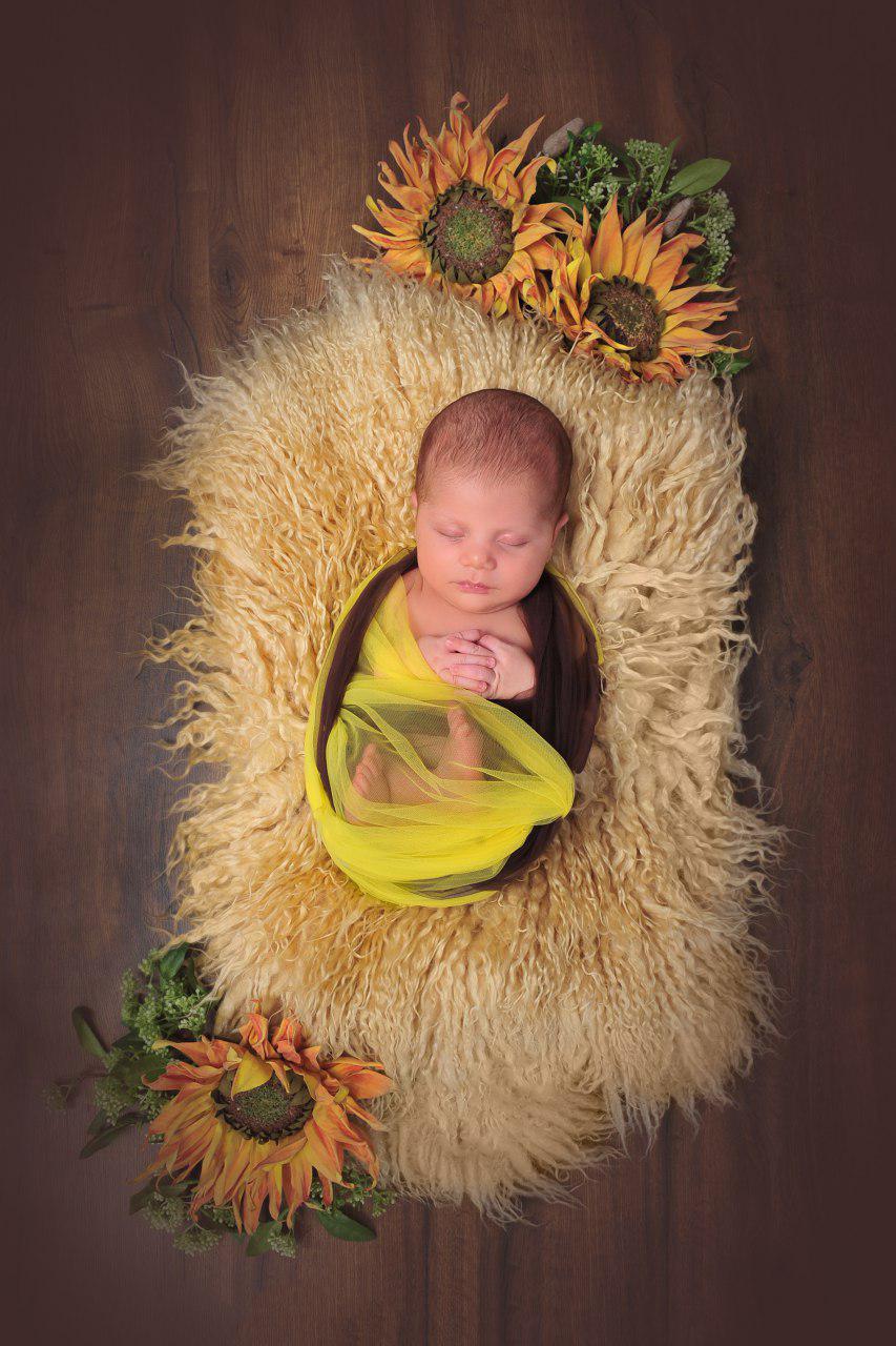 عکس خلاقانه نوزاد عکاسی مفهومی نوزاد